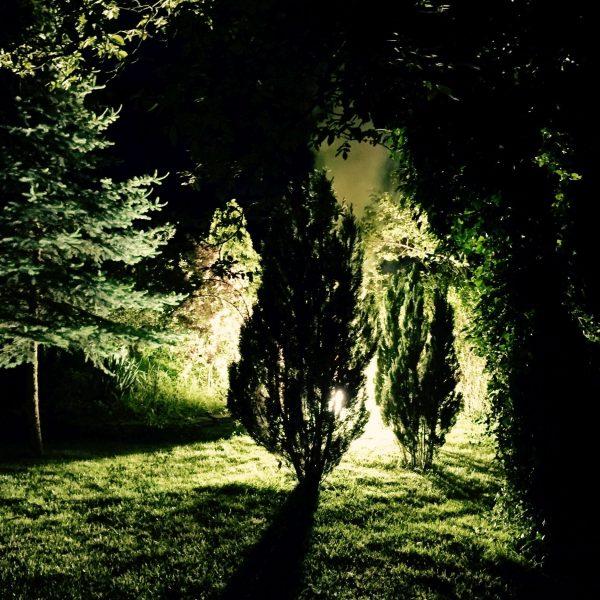 Foto: Barockfeuerwerk: Illumination Grün